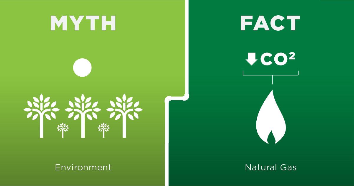 Myth vs. Fact Environment Graphic